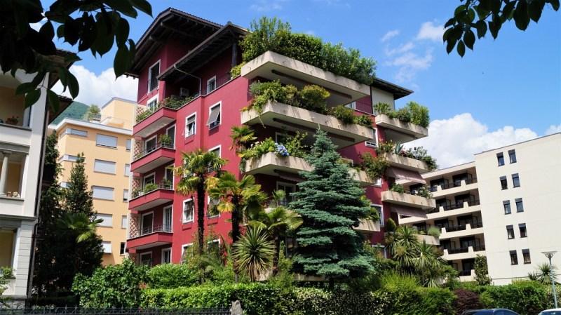 Locarno im Tessin mit dichter Vegetation
