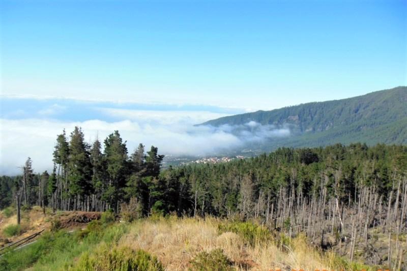 Auf den Weg in den Teide Nationalpark müsst Ihr durch die Wolkendecke