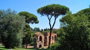 Pallatin und Circus Maximus
