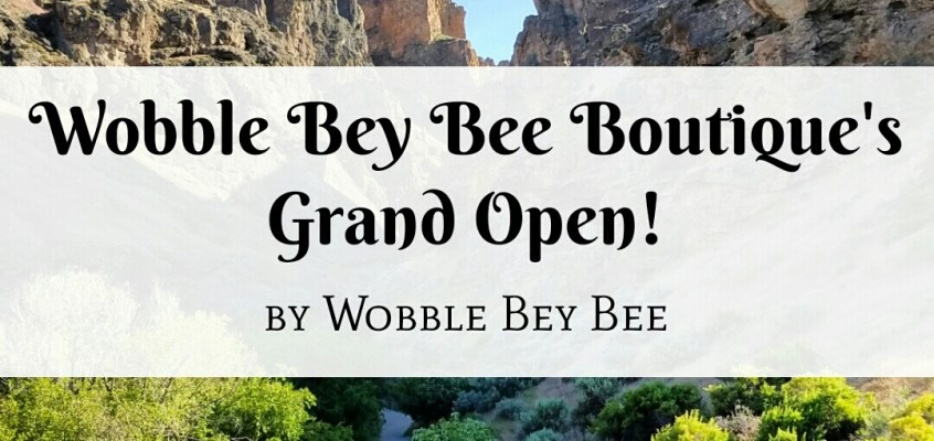 Wobble Bey Bee Boutique's Grand Opening!!!