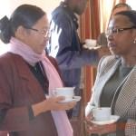 2011 Consultation