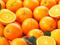 Geschäftsmann dementiert dass es keinen Markt für paraguayische Orangen gibt