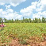 Landwirt zeigt Schäden durch Spritzmittel an