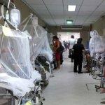 Sechs Tote im Osten durch Dengue