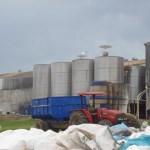 Stärkefabrik verschmutzt angeblich die Umwelt