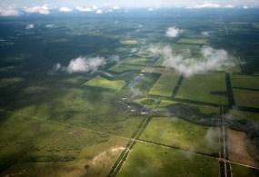 Immobilien Investment in Paraguay? – Teil 1: Grundstücke