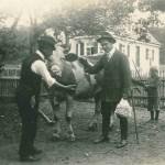 Ein typischer Kuhhandel