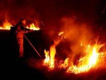 Zwischen Gefrier- und Flächenbrand im Chaco