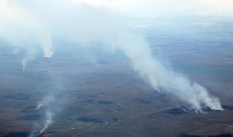 Waldbrände in Paraguay tragen zum Klimawandel bei