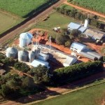 Kooperative Carlos Pfannl plant den Bau einer Zuckerrohrfabrik