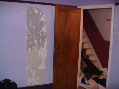 Fixing walls and removing carpets