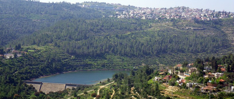Foto Jerusalem Forest