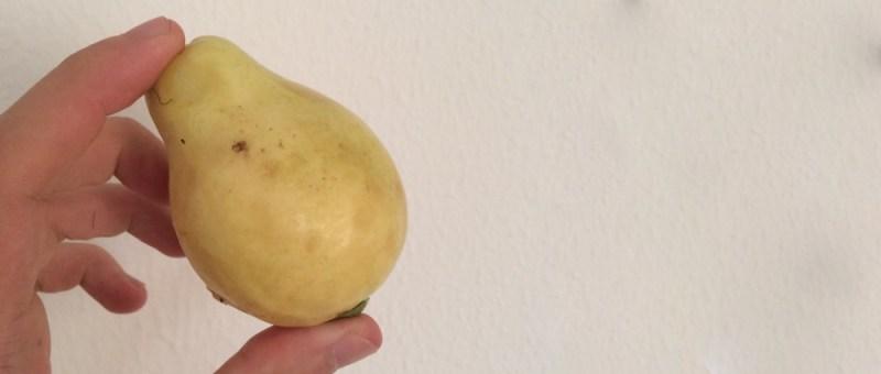 Foto Ungewohnte Birne