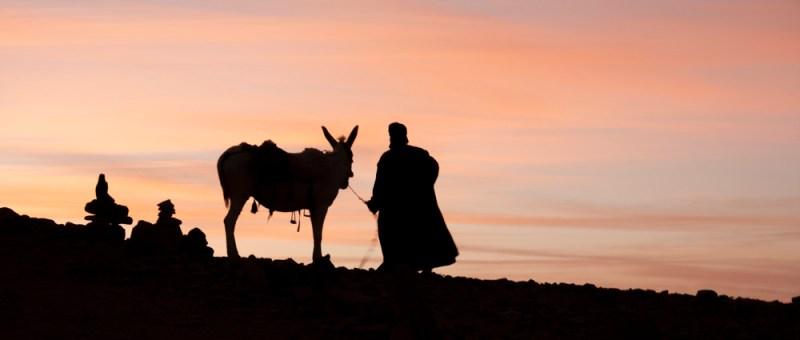 Foto Beduine und Esel