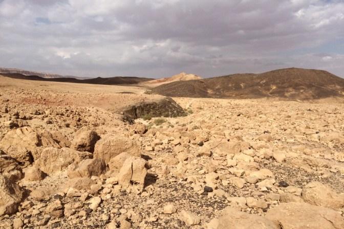 Foto Leere Wüste