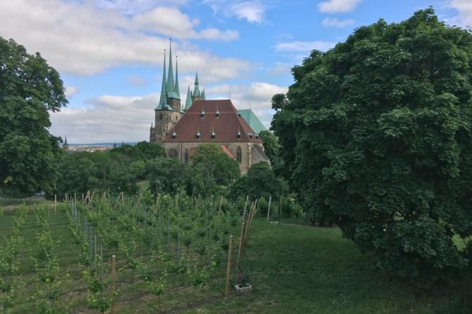 Foto Domblick