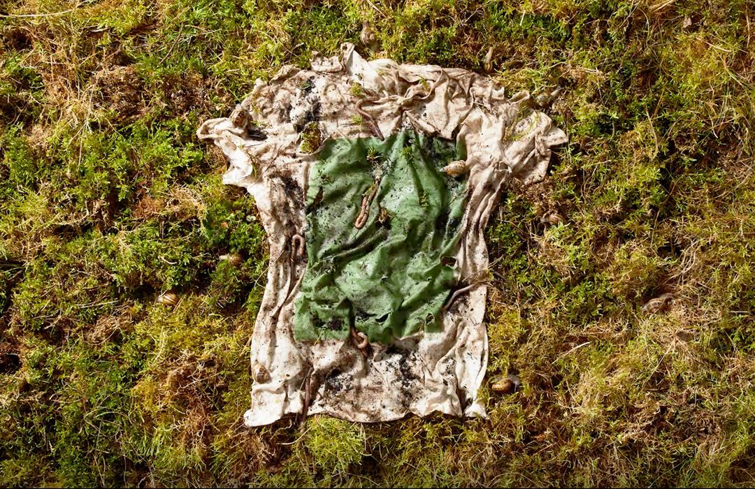 Esta camiseta hecha de plantas y algas se convierte en composta