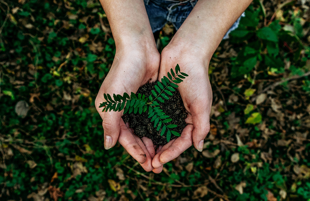 7 Consejos para reducir tu huella ecológica