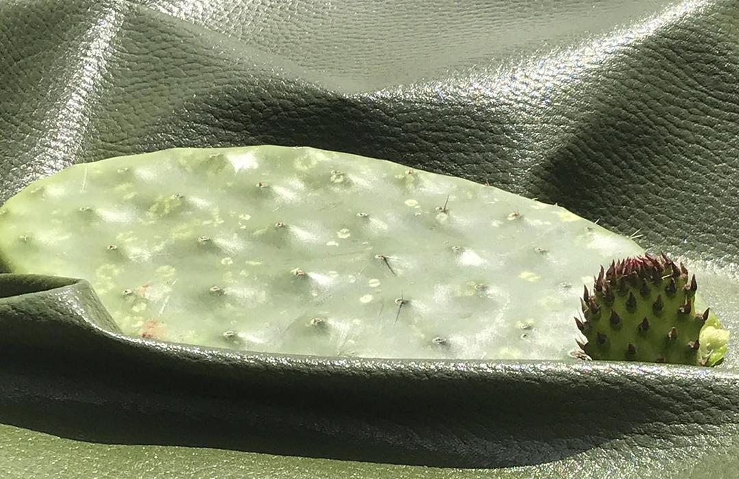 Desserto, piel creada con nopal