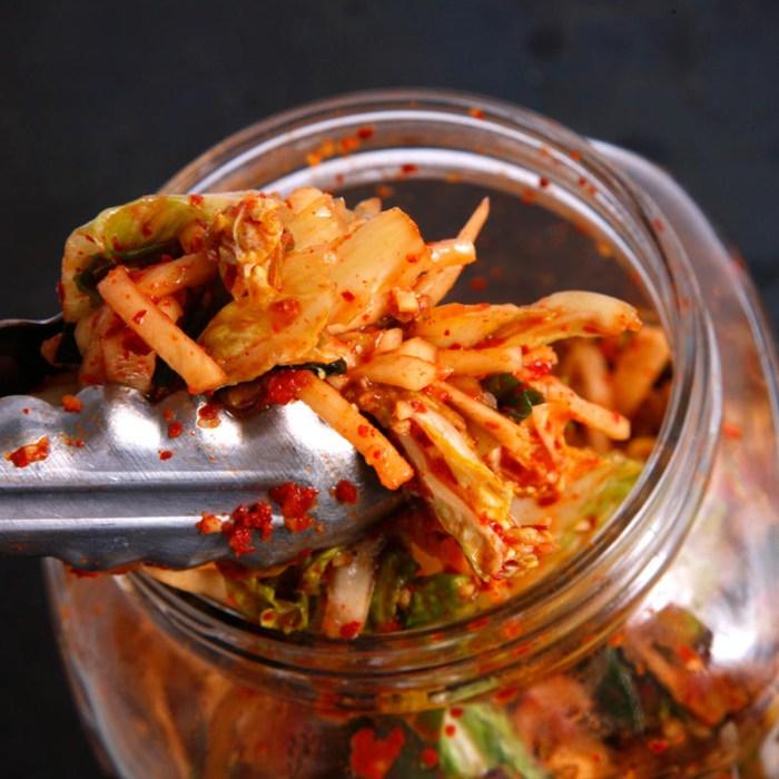 alimentos fermentados en Wokii