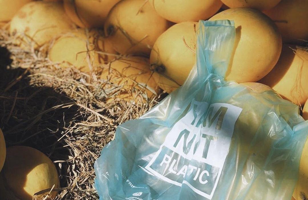 Descubre los productos ecológicos de Avani Eco