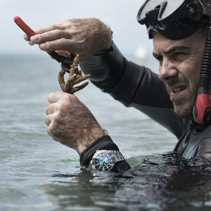Oris, los relojes que resguardan los ecosistemas marinos en Wokii México