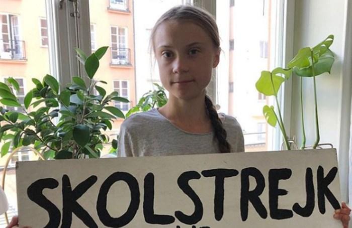 Científicos nombran especie de araña en honor a Greta Thunberg