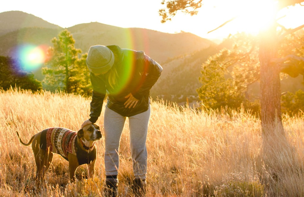 Para búsquedas relacionadas a relajación de perro