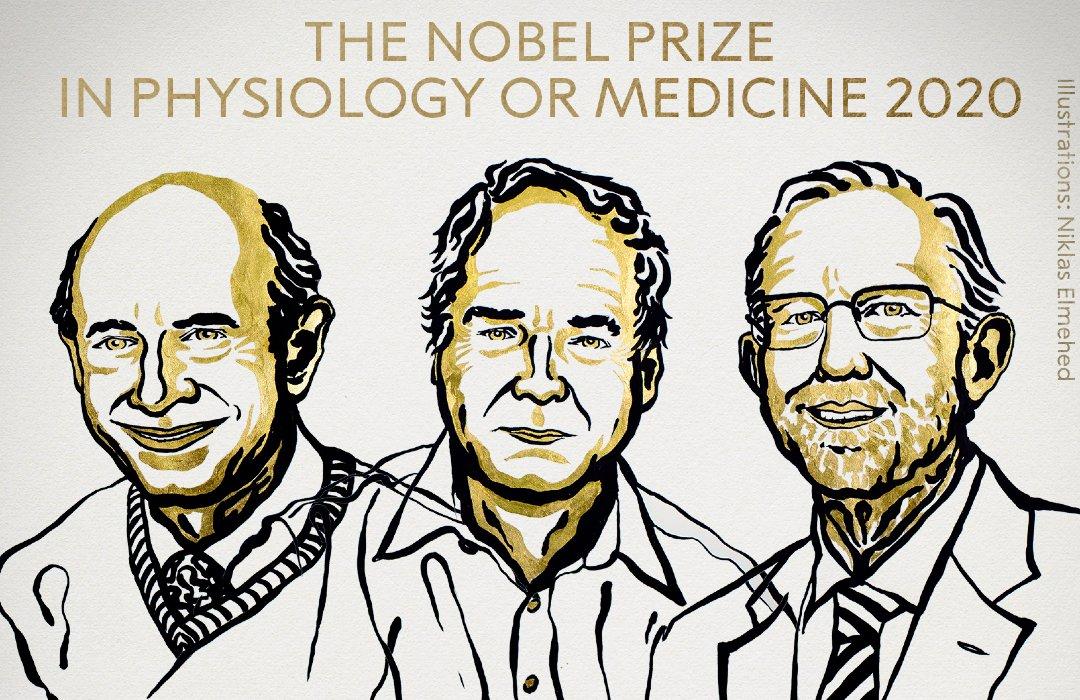 Otorgan el Premio Nobel de Medicina a los descubridores de la hepatitis C