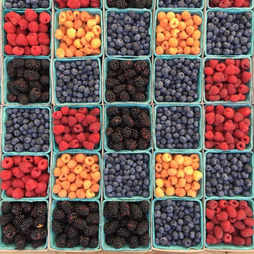 Alimentos para mejorar la salud de tu cerebro