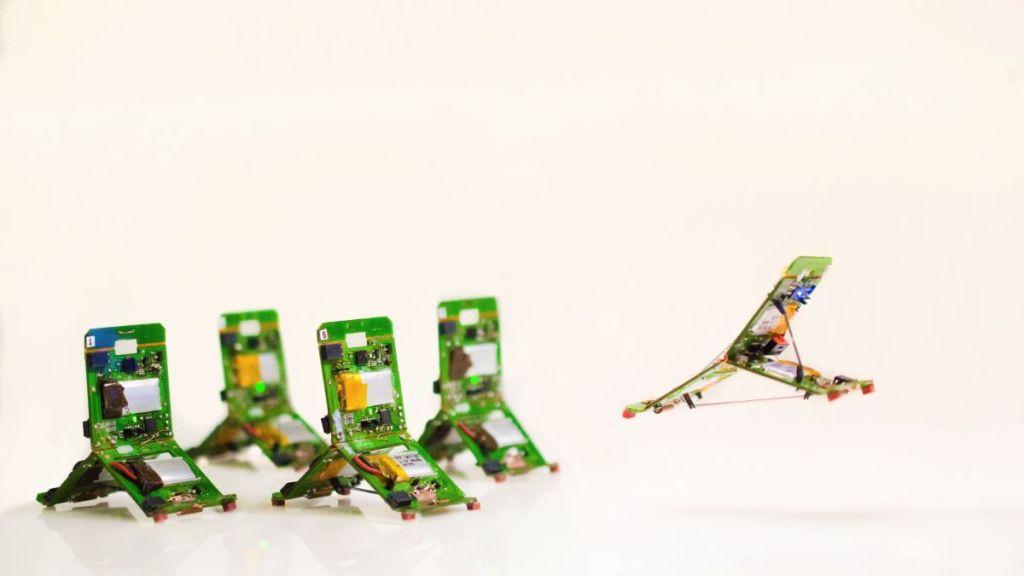Los insectos robot ya existen: te decimos sus aplicaciones en la ciencia