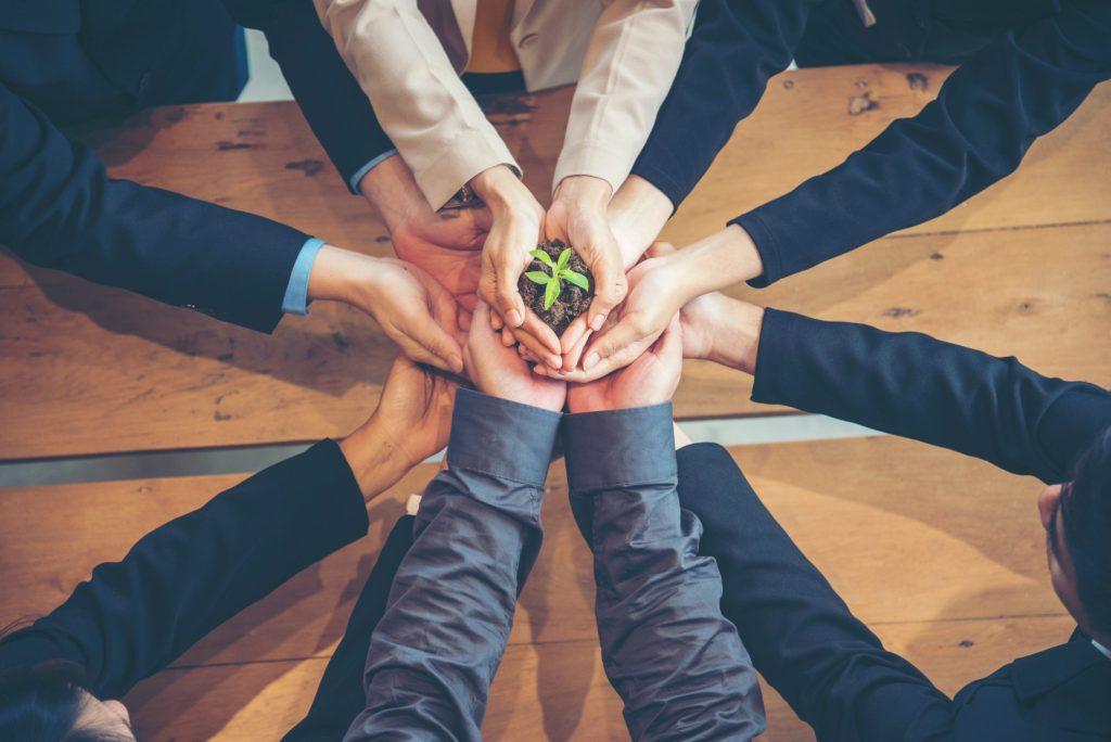 5 pasos para lograr que tu negocio sea sostenible