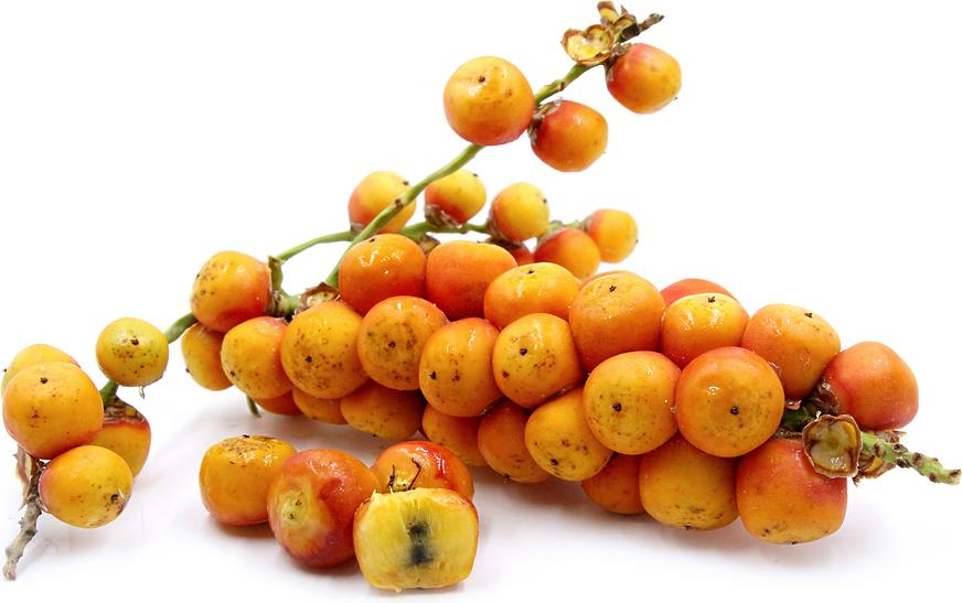 poderosos nutrientes tejocote
