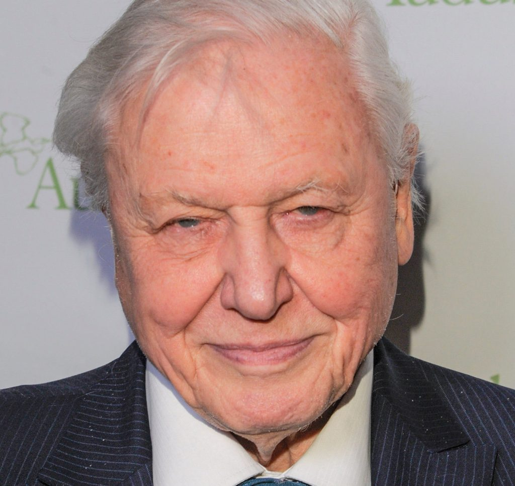 ¿Por qué Sir David Attenborough deja Instagram?