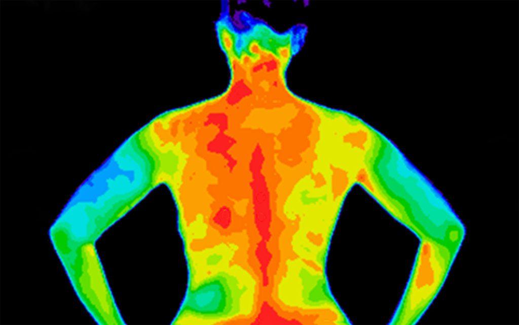 ¿Cómo combatir la inflamación del cuerpo?
