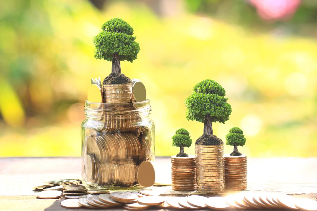 Bonos verdes: una honesta solución económica para el planeta