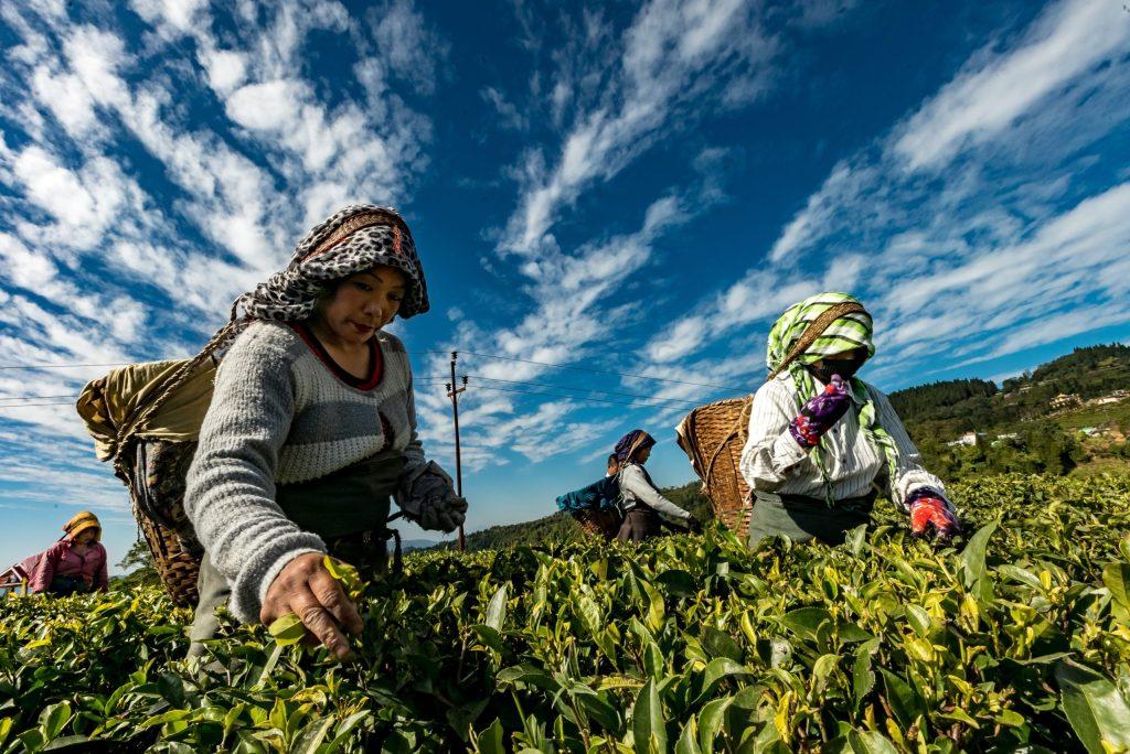 El impacto económico de las mujeres podría ser más grande, incluso que el de China