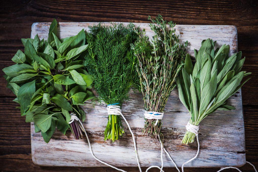 Las 10 hierbas aromáticas que nunca deben faltar en tu cocina