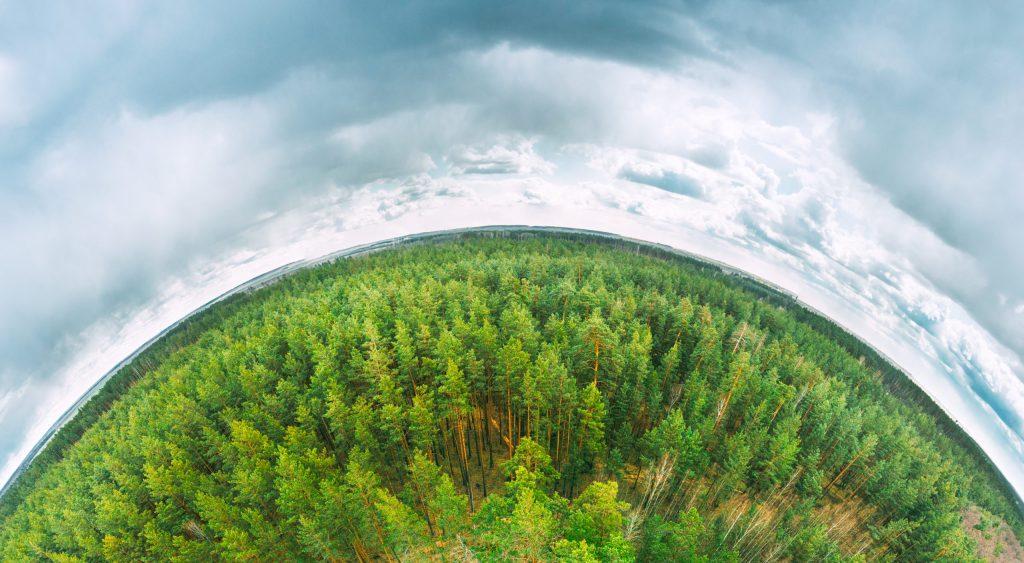 Día de la Tierra 2021: ¿por qué jamás debemos volver a la normalidad?