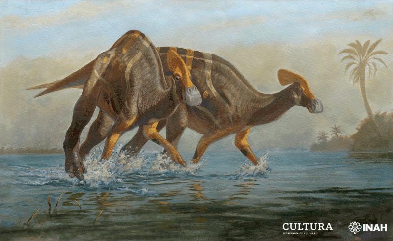 el INAH anunció que se encontró una nueva especie de dinosaurio