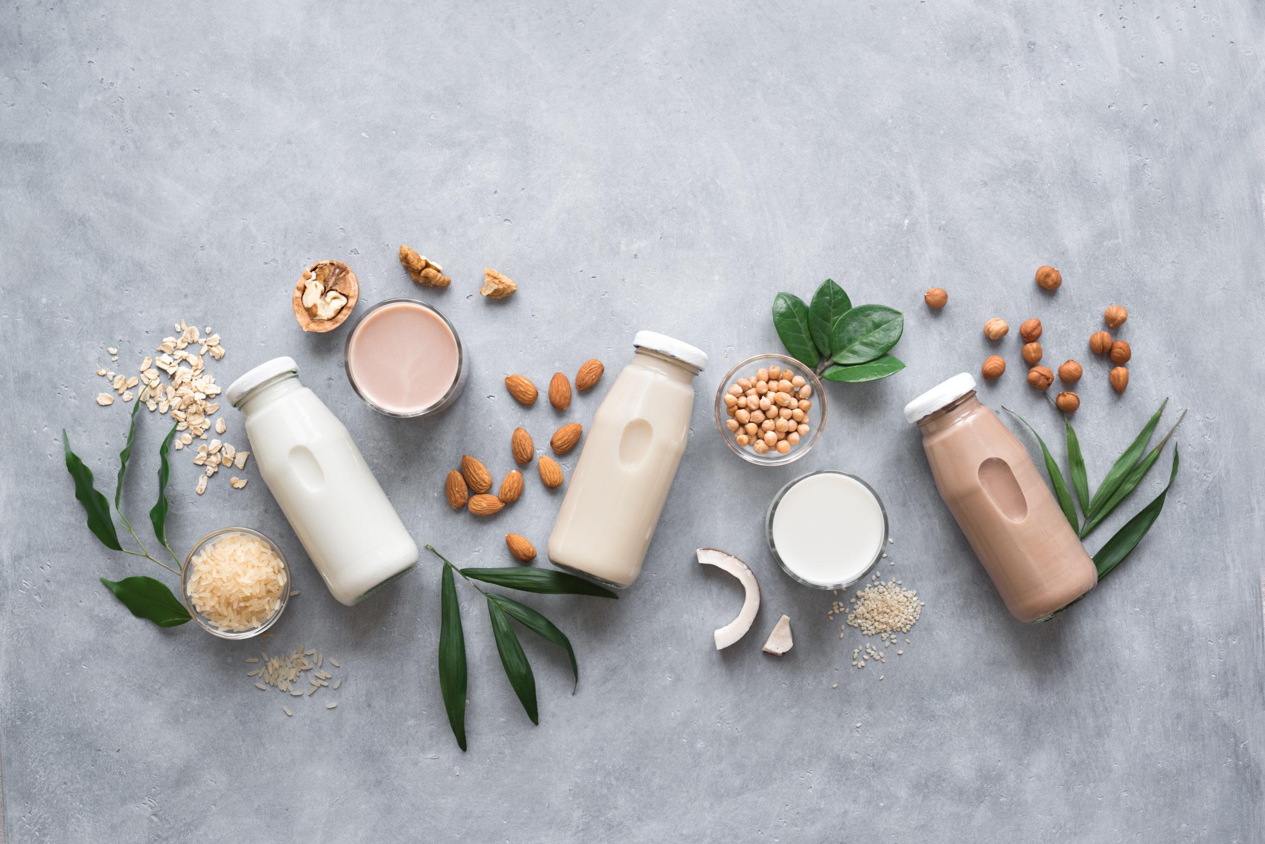 ¿Cómo sé si las leches vegetales son para mí? Aquí una breve guía