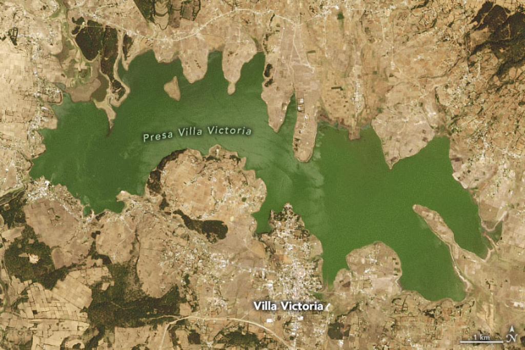Opinión: La sequía en México, ¿cuáles son las causas reales?