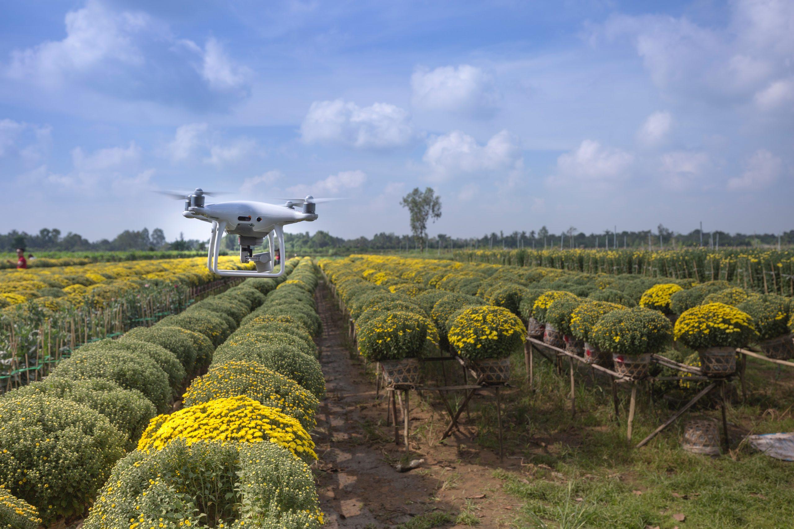Natalie Portman y otros famosos invierten en granjas del futuro