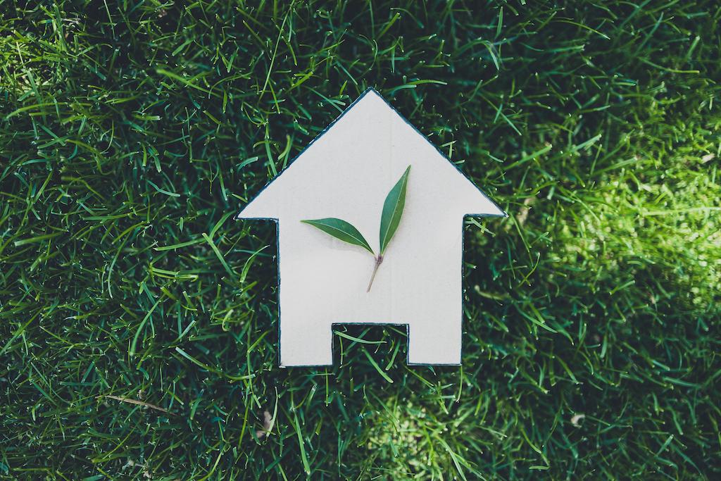 Acciones prácticas y sencillas para tener un hogar sustentable ¡a partir de hoy!