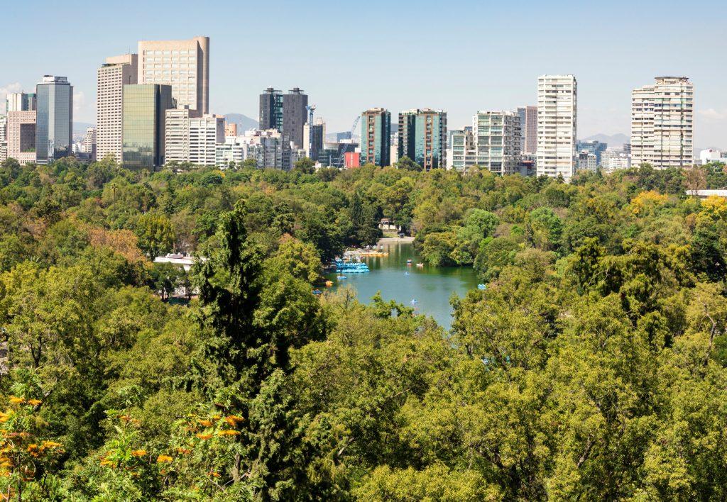 ¡AYUDA! Una tercera parte del Bosque de Chapultepec está en peligro de extinción