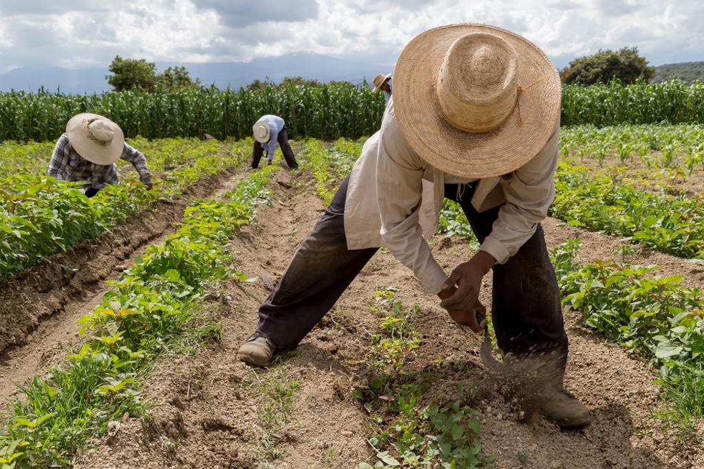 Así es la admirable labor social que Aires de Campo realiza en México