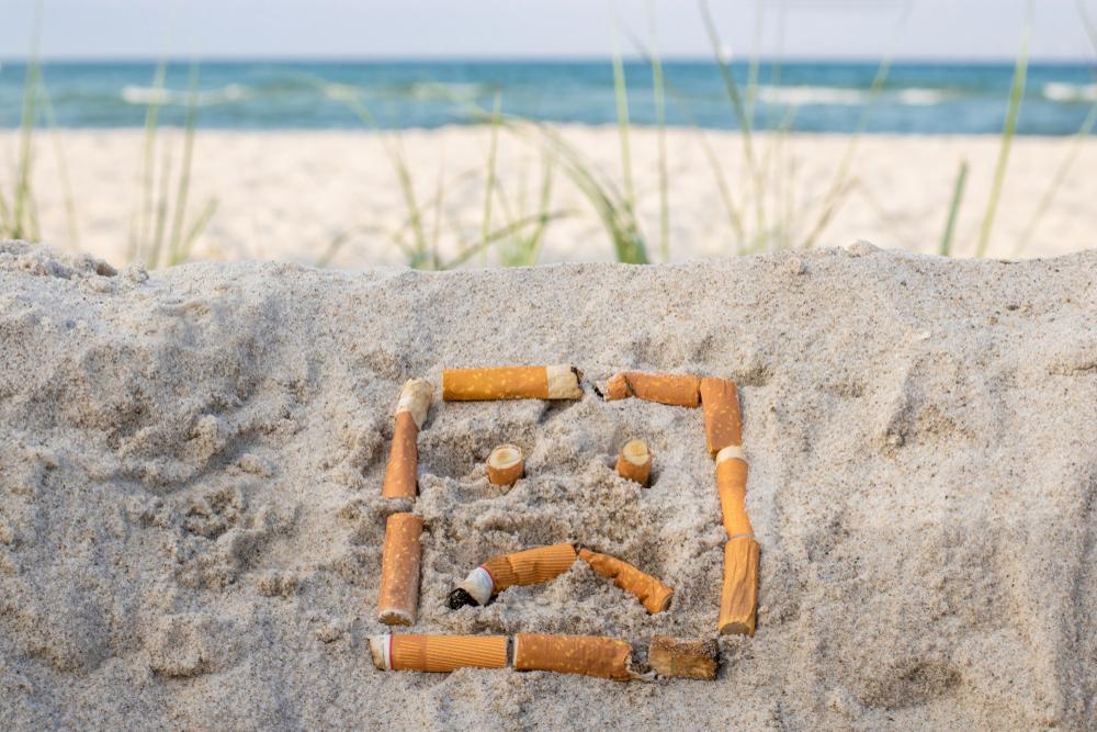 Un poderoso hongo es capaz de limpiar y degradar ¡las colillas de cigarro!