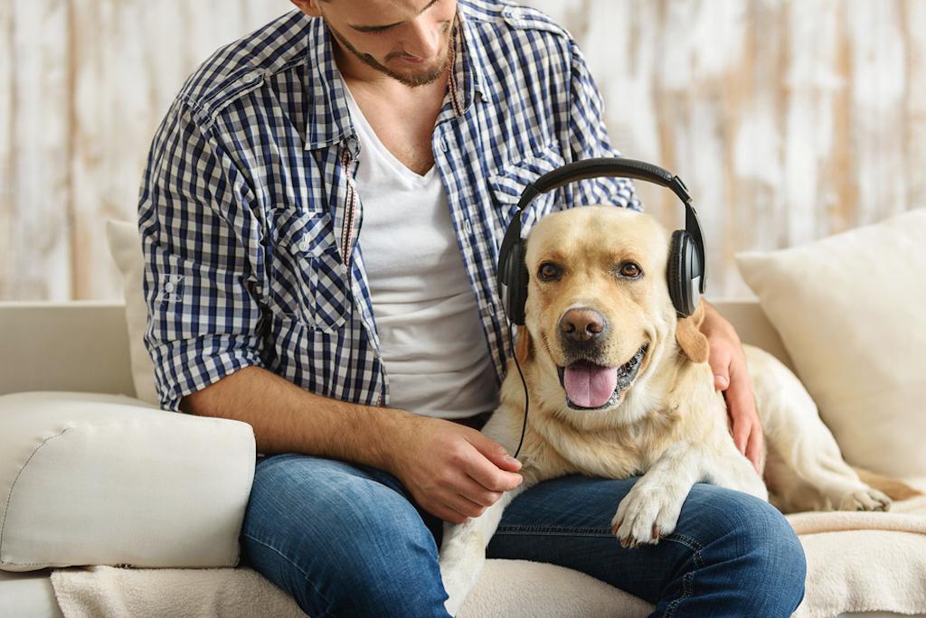 Música para perros: un remedio para ayudarles a sentirse más relajados