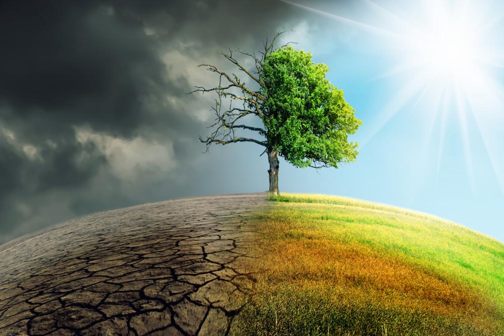 Opinión: Comunicación efectiva y acciones claras para frenar el cambio climático