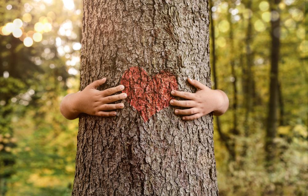 ¡Ojo aquí! Cuidar la naturaleza aporta felicidad a tu vida: estudio
